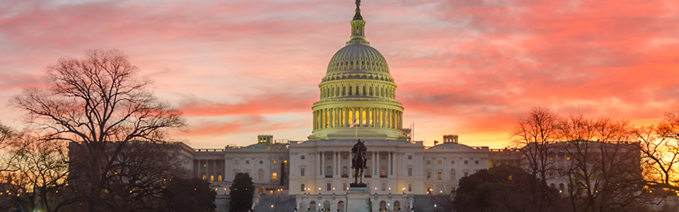 Tour of the US Capitol on Saturday, October 19, 2019 at 2:00 PM